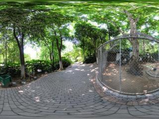 赭山动物园—孔雀室全景