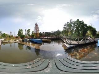 湿地廊桥水中欢鱼