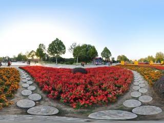 保定植物园虚拟旅游