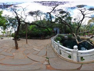 蝴蝶泉全景