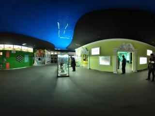 猫科动物展厅