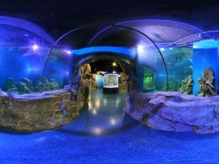 海底世界东厅2