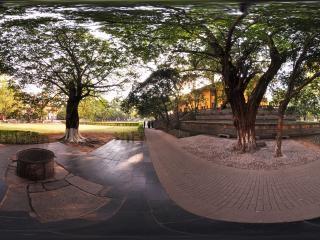 夫妻树和福泉井全景