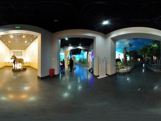 神奇的非洲展厅3