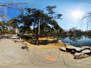动物园湖边一