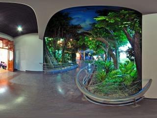 神奇的非洲展厅1