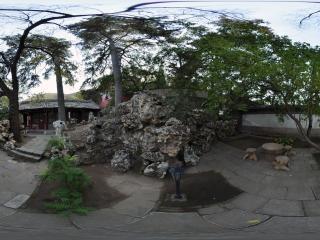 牡丹园茶社内全景