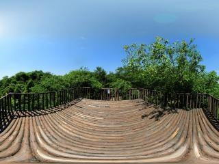 竹间观景台