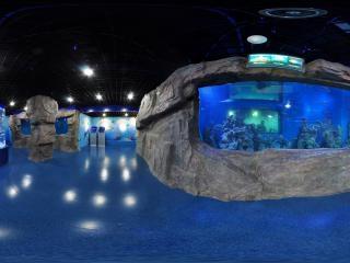 海底世界东厅1