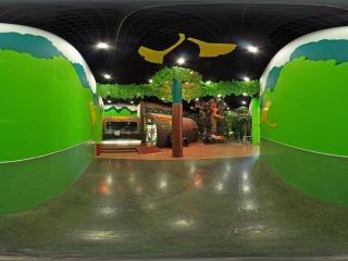 植物演化西厅