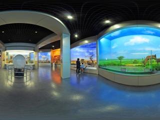 非洲动物西厅3