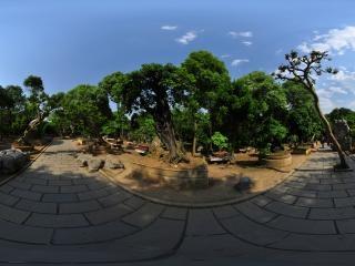 盆景园二全景