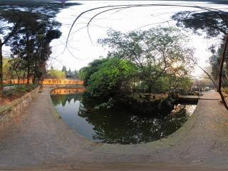 温泉寺莲池边
