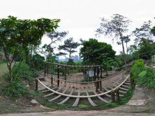 森林乐园趣味项目