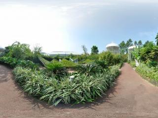 兰花园巨型鸟笼全景