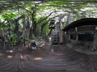 亚马逊鱼类展示区