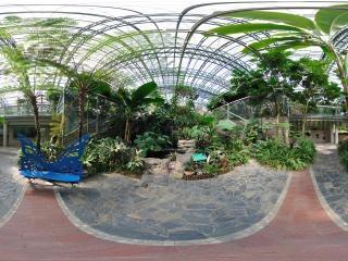 四季植物馆负一层水池全景