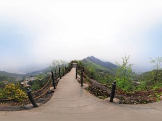 龙泉山山路全景