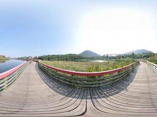 湿地栈桥全景