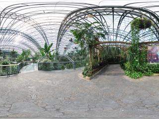 四季植物馆兰花展区门口