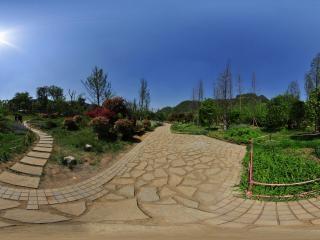 花溪公园全景