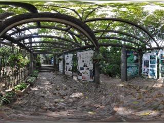 森林小学-花与叶教室