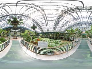 四季植物馆中庭