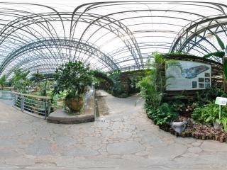 四季植物馆珍奇植物展区门口