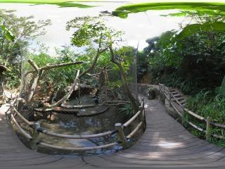 孔雀园全景