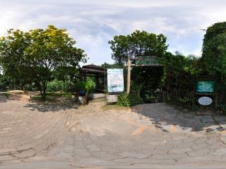 热带雨林入口