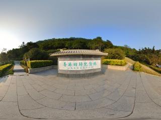 香港回归纪念林