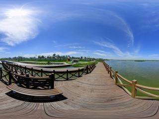 湿地植物展示区全景