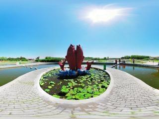 文化苑锦鲤池
