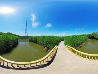 大观园石桥路
