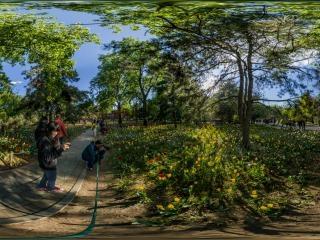 北京—海淀植物园郁金香文化节05全景