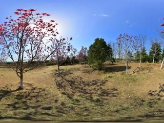 北京—大兴南海子公园05全景