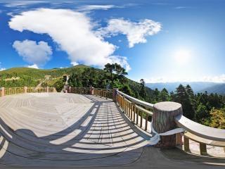 西藏—林芝林海地面2全景
