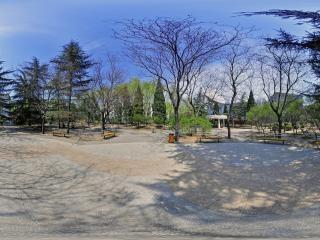丁香园全景