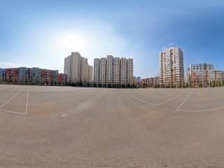 排球场全景