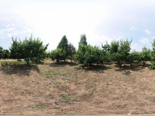 北京—密云远洋瑞景园林工程有限公司苗圃基地全景