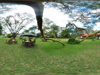奈瓦沙虚拟旅游