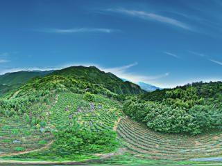 安徽—池州皖南石台 茶的绿洲全景