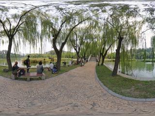 农展馆湿地公园虚拟旅游