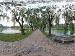 北京—朝阳区农展馆湿地公园(六)