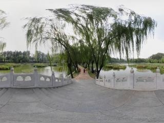 北京—朝阳区农展馆湿地公园(四)