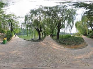 北京—朝阳区农展馆湿地公园(二)