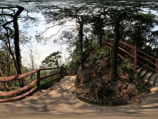 宝塔峰上山路全景