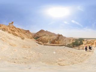 突尼斯—梅特拉乌伊虚拟旅游