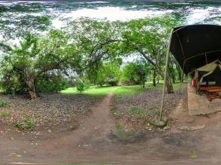 马赛马拉国家公园虚拟旅游