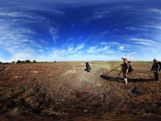南非开普敦西海岸公园虚拟旅游